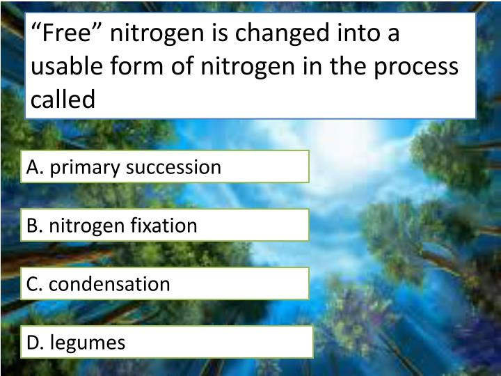"""Free"" nitrogen is changed into a usable form of nitrogen in the process called"
