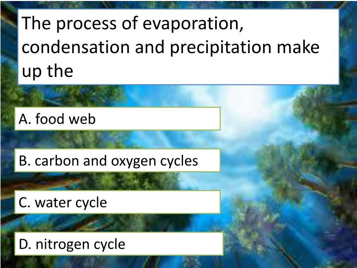 The process of evaporation, condensation and precipitation make up the