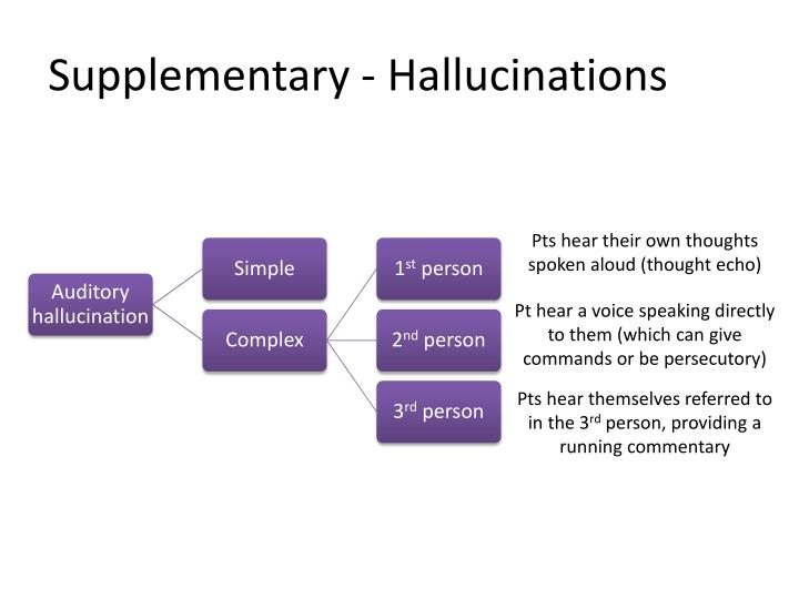 Supplementary - Hallucinations