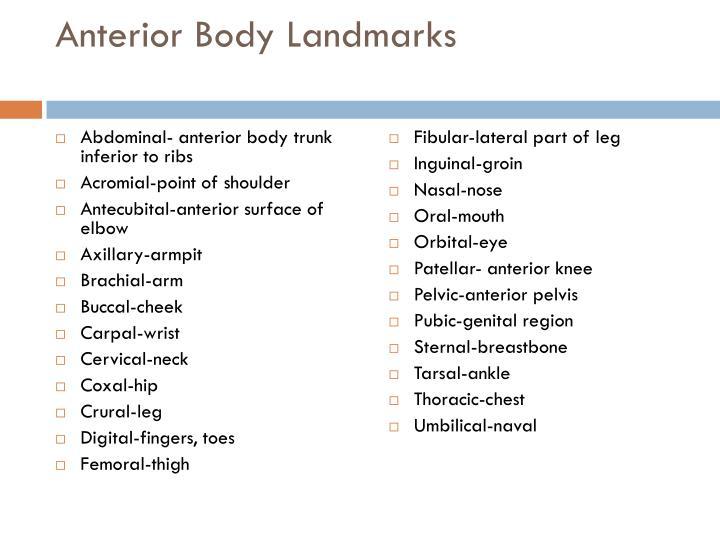 Anterior Body Landmarks
