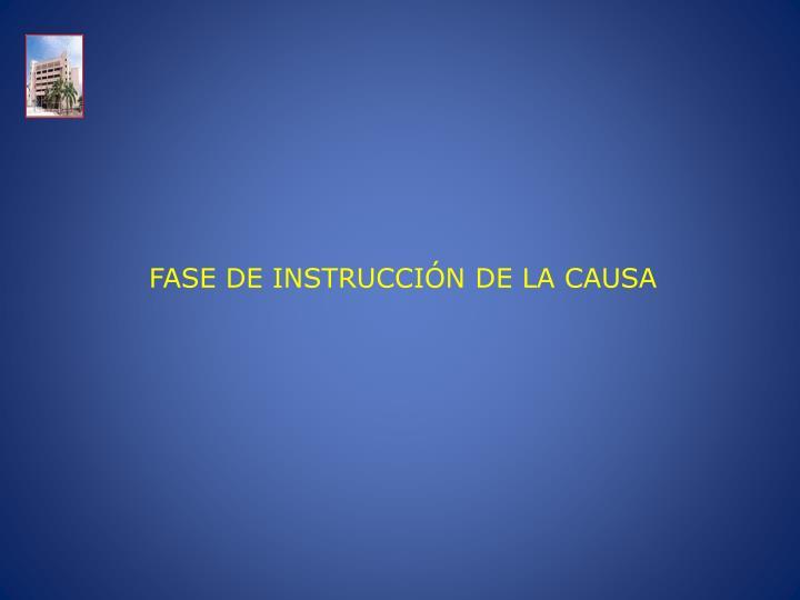 FASE DE INSTRUCCIÓN DE LA CAUSA