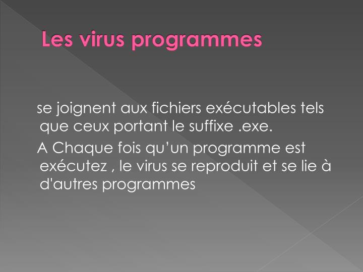 Les virus programmes