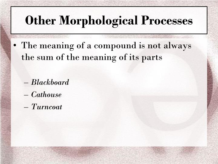 Other Morphological Processes