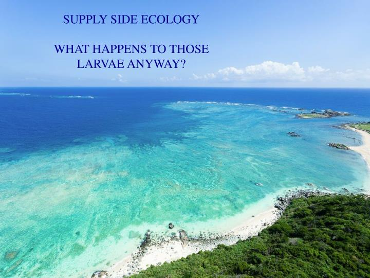 SUPPLY SIDE ECOLOGY