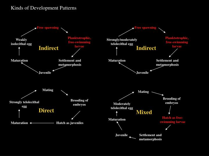 Kinds of Development Patterns