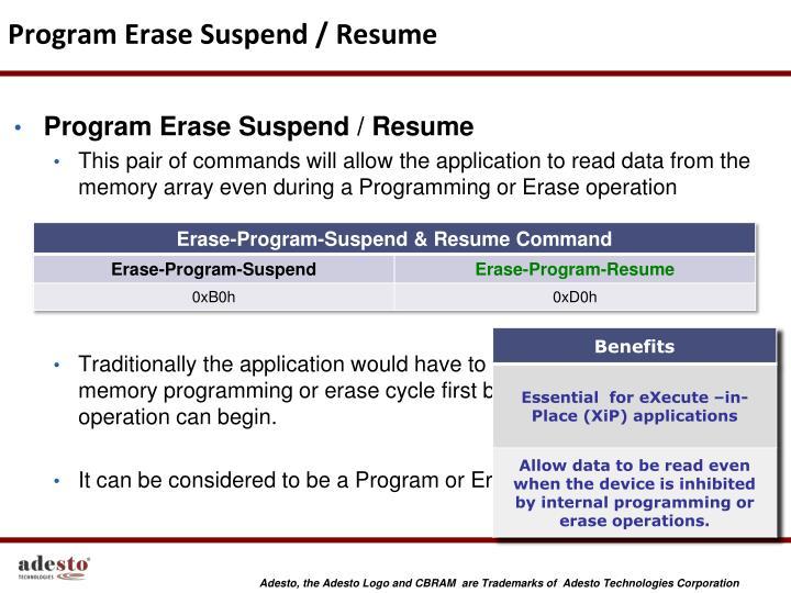 Program Erase Suspend / Resume