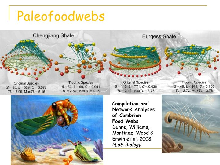 Paleofoodwebs