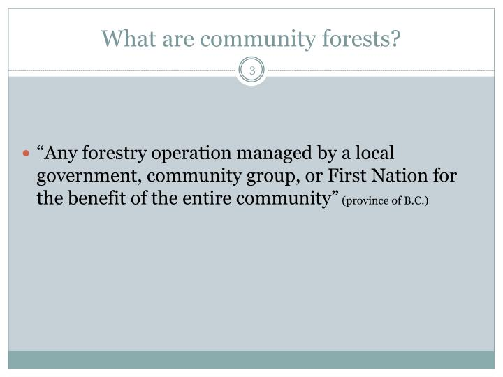 What are community forests?