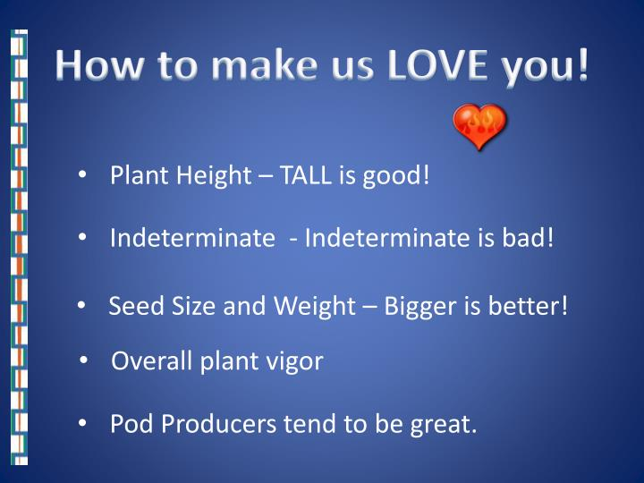 How to make us LOVE you!