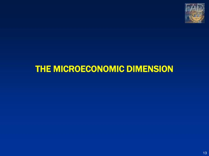THE MICROECONOMIC DIMENSION