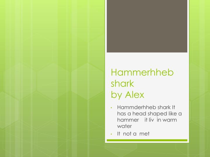 Hammerhheb