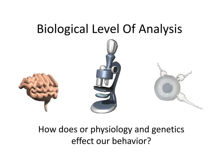 Biological level of analysis