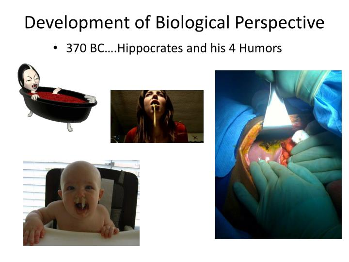 Development of biological perspective