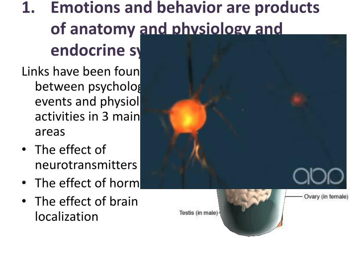 Emotions and behavior are products of anatomy and physiology and endocrine systems