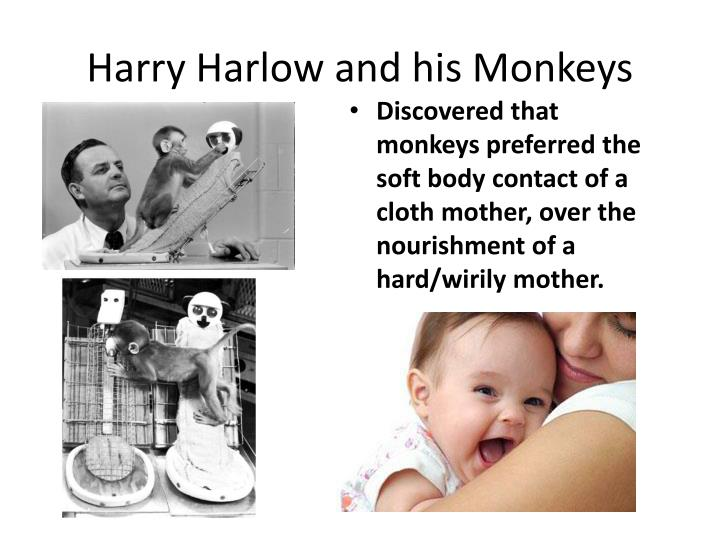 Harry Harlow and his Monkeys