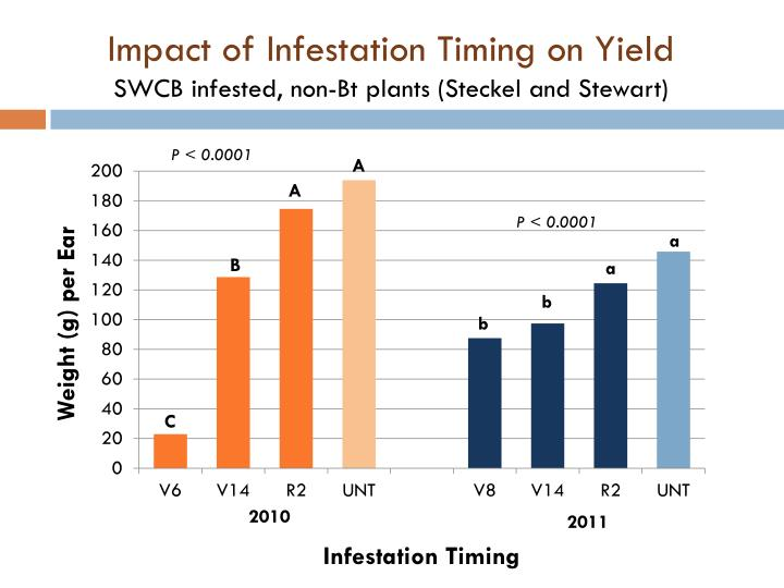 Impact of Infestation Timing on Yield
