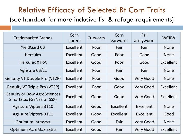 Relative Efficacy of Selected Bt Corn Traits