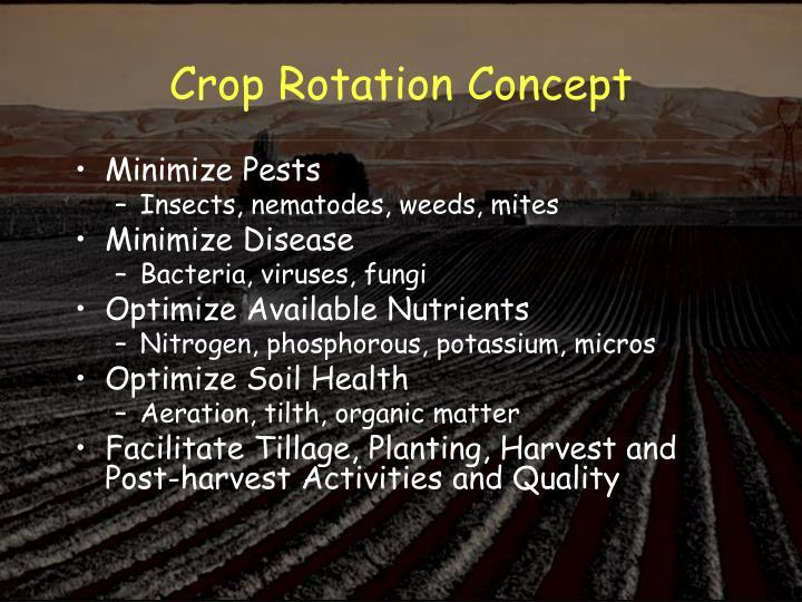 Crop Rotation Concept