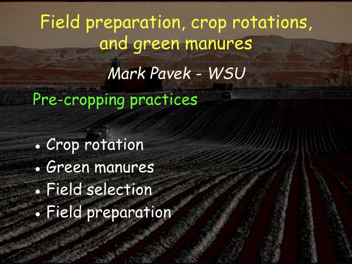 Field preparation crop r otations and green manures mark pavek wsu