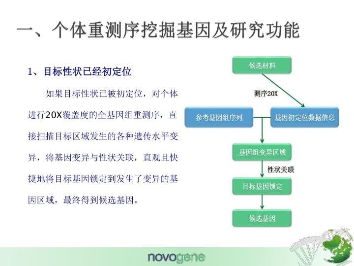 一、个体重测序挖掘基因及研究功能