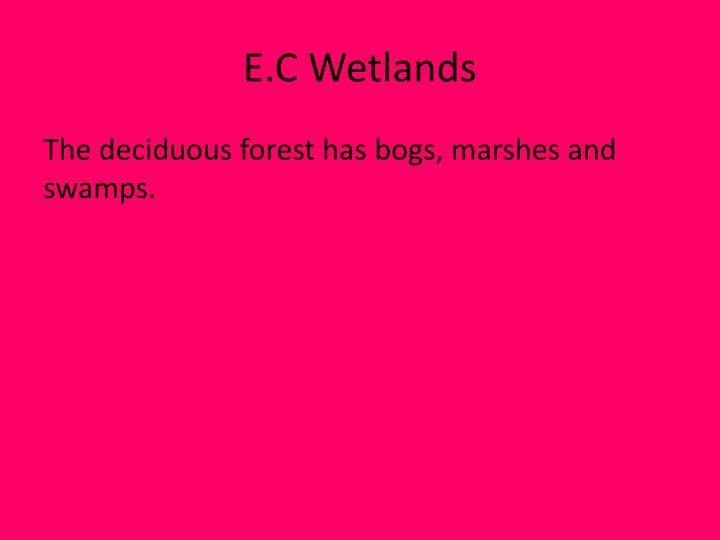 E.C Wetlands