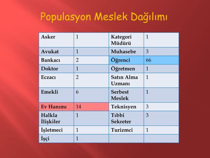 Populasyon Meslek Dağılımı