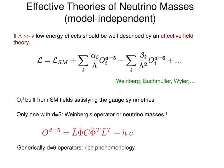 Effective Theories of Neutrino Masses