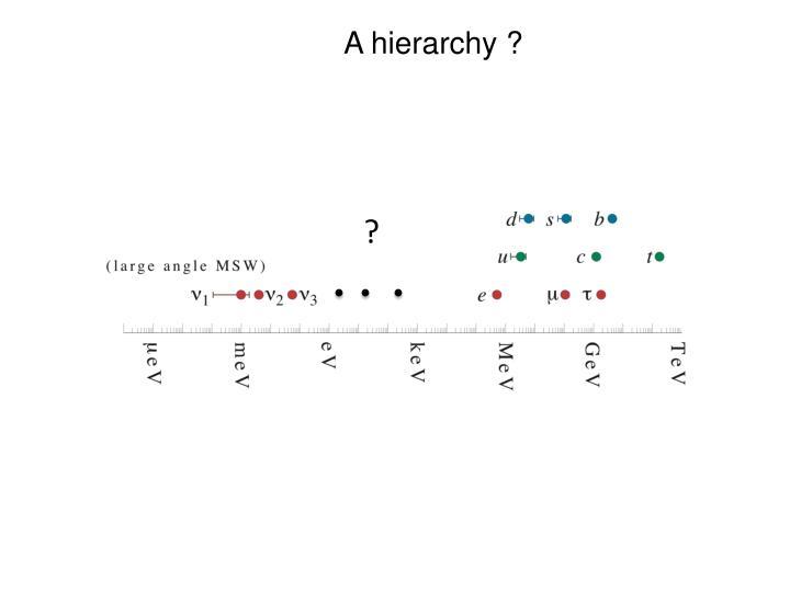 A hierarchy ?