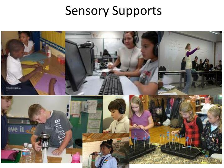 Sensory Supports