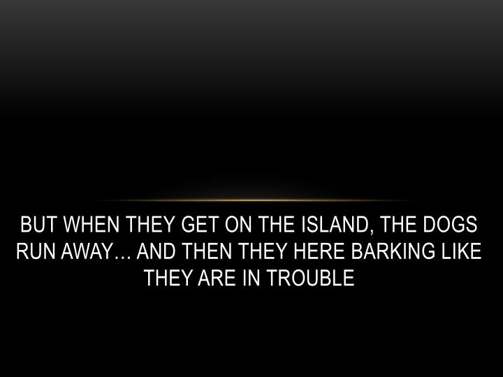 But when they get on the island, the dogs run away… and then they here barking like they are in trouble