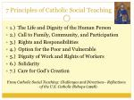 7 principles of catholic social teaching