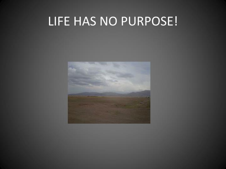 LIFE HAS NO PURPOSE!