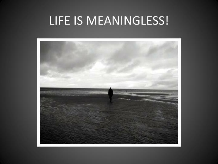 LIFE IS MEANINGLESS!