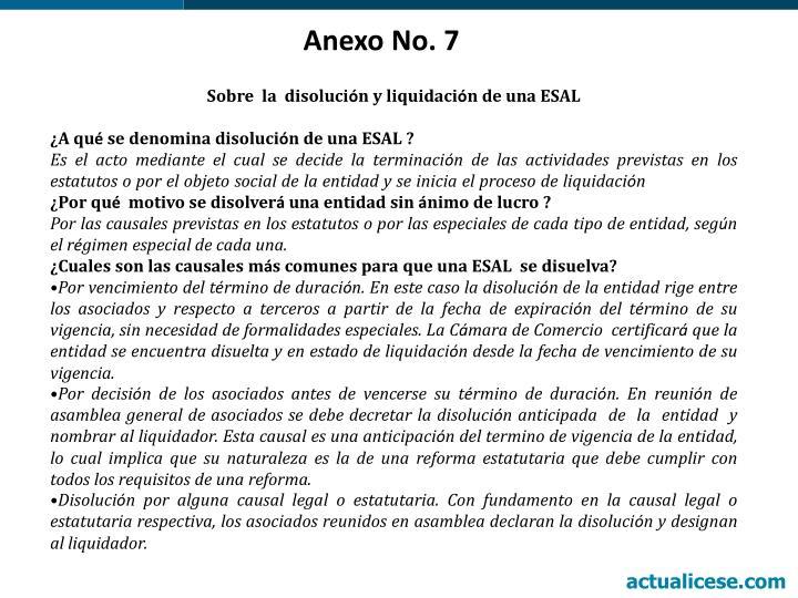 Anexo No. 7