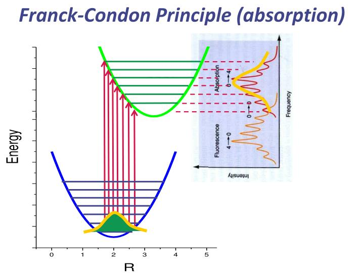 Franck-Condon Principle (absorption)