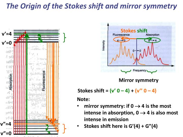 The Origin of the Stokes shift and mirror symmetry