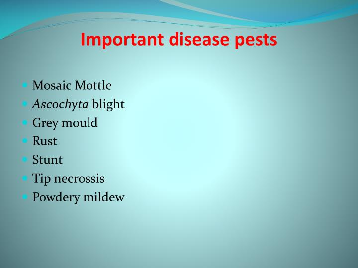 Important disease pests