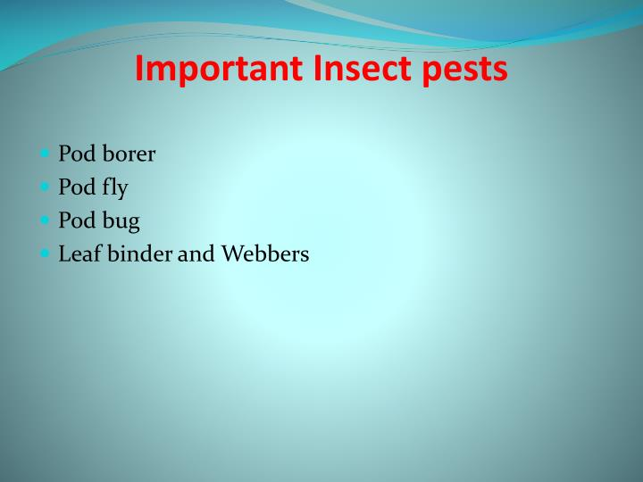 Important Insect pests