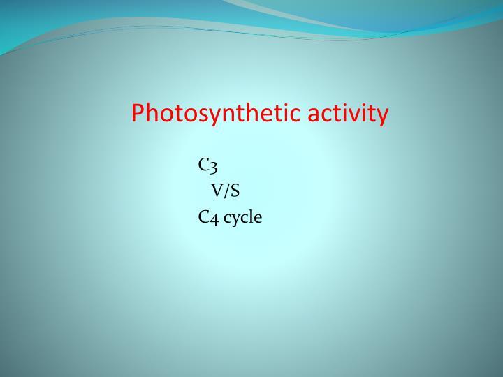 Photosynthetic activity