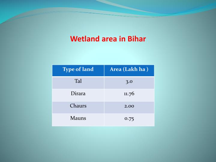 Wetland area in Bihar