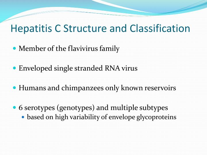 Hepatitis C Structure and