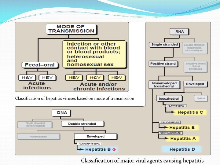 Classification of hepatitis