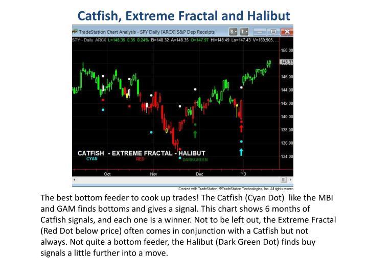 Catfish, Extreme Fractal and Halibut