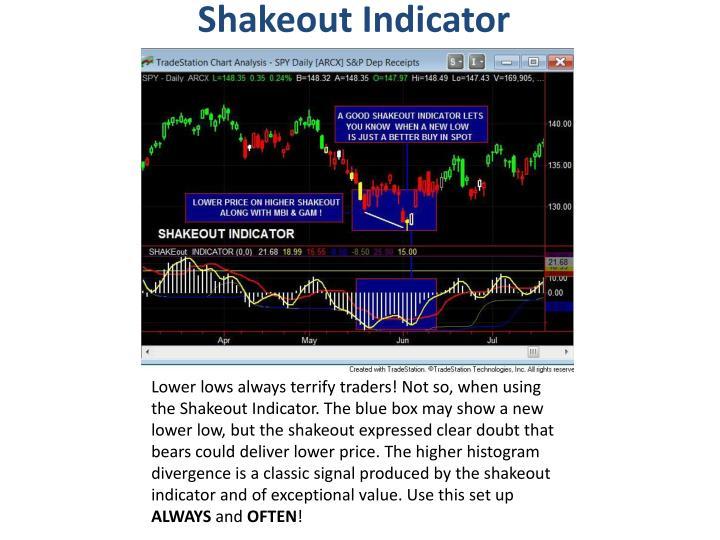 Shakeout Indicator