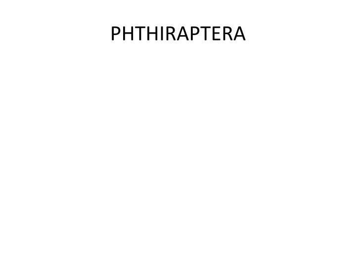 PHTHIRAPTERA