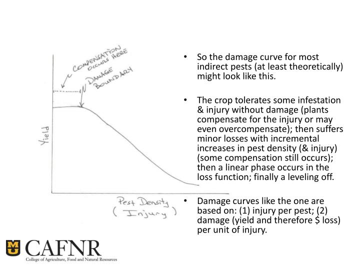 So the damage curve for most indirect pests (at least theoretically) might look like this.