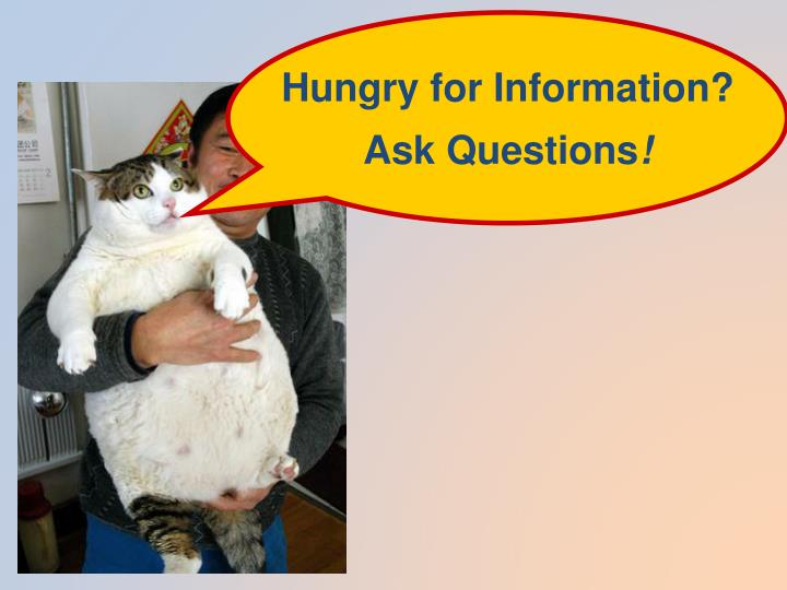 Hungry for Information?