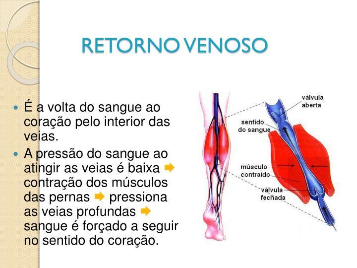 RETORNO VENOSO