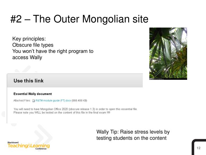 #2 – The Outer Mongolian site