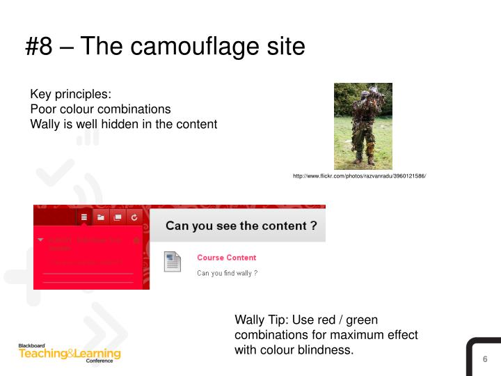 #8 – The camouflage site